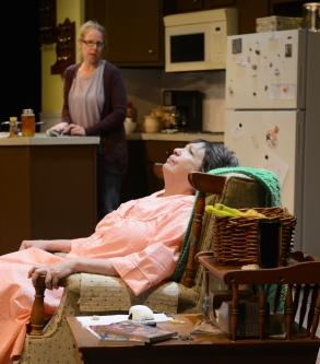 Kris Schinske and Pam Dougherty in 'night, Mother. MUTZ PHOTO